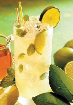 Rooibos Iced Mint Tea